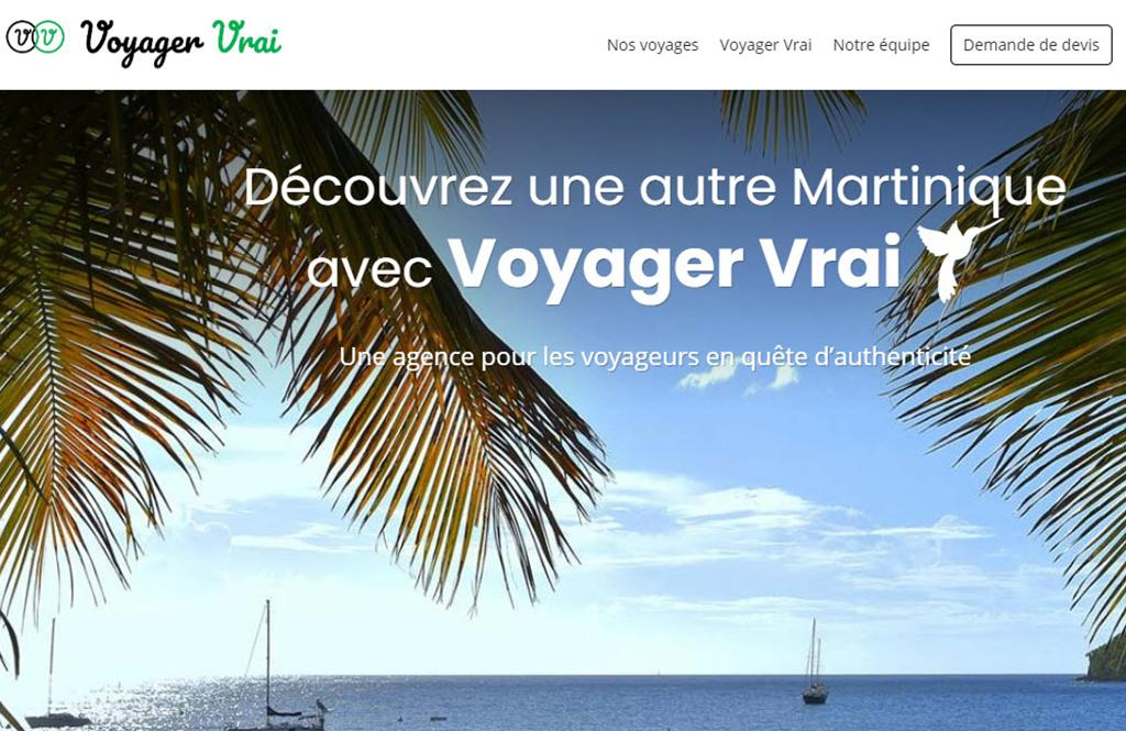 Voyager Vrai